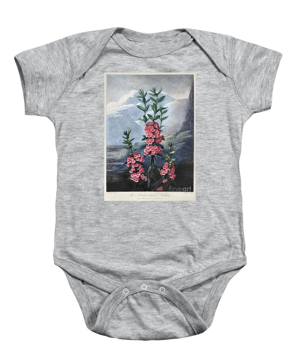 1804 Baby Onesie featuring the photograph Thornton: Kalmia by Granger