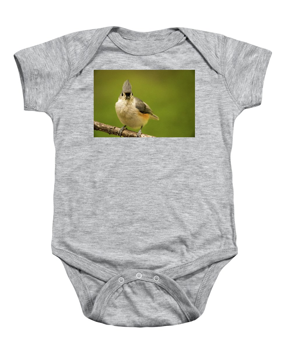 Here Baby Onesie featuring the photograph Titmouse Says Here Is Looking At You by Douglas Barnett
