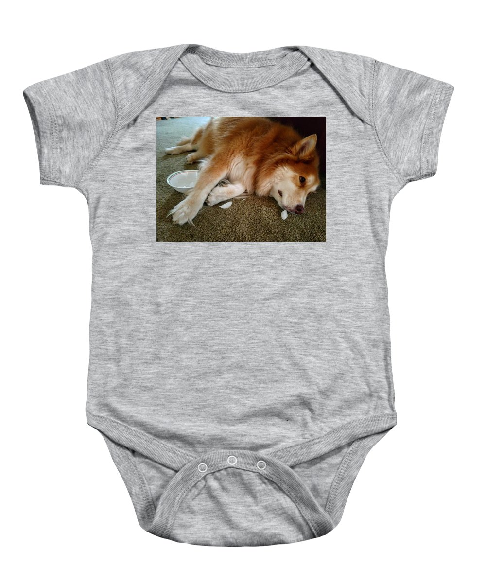 Baby Onesie featuring the photograph Too Tired For Treats by Brad Nellis