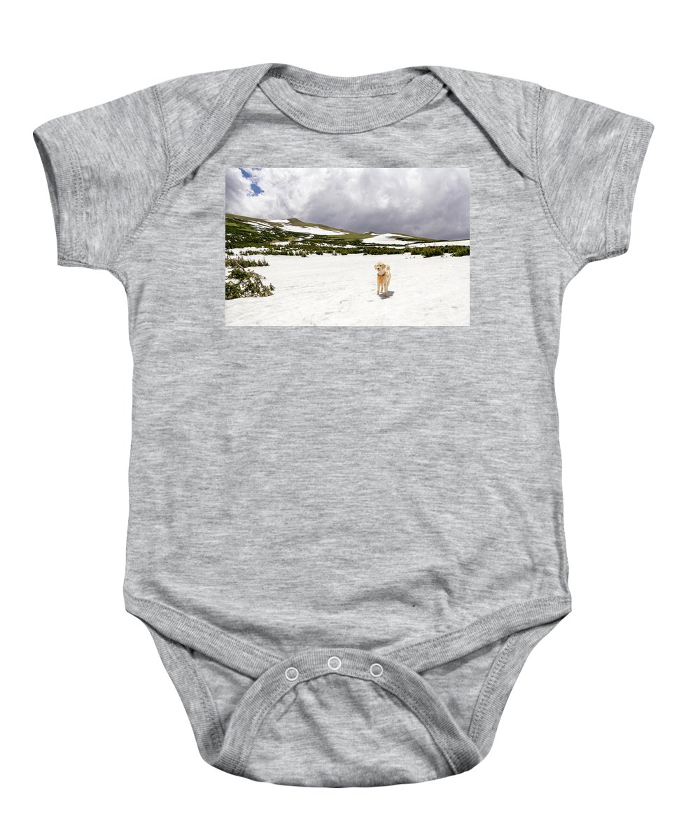 2017 Baby Onesie featuring the photograph Traildog At Kingston Peak Snow Field by Cary Leppert
