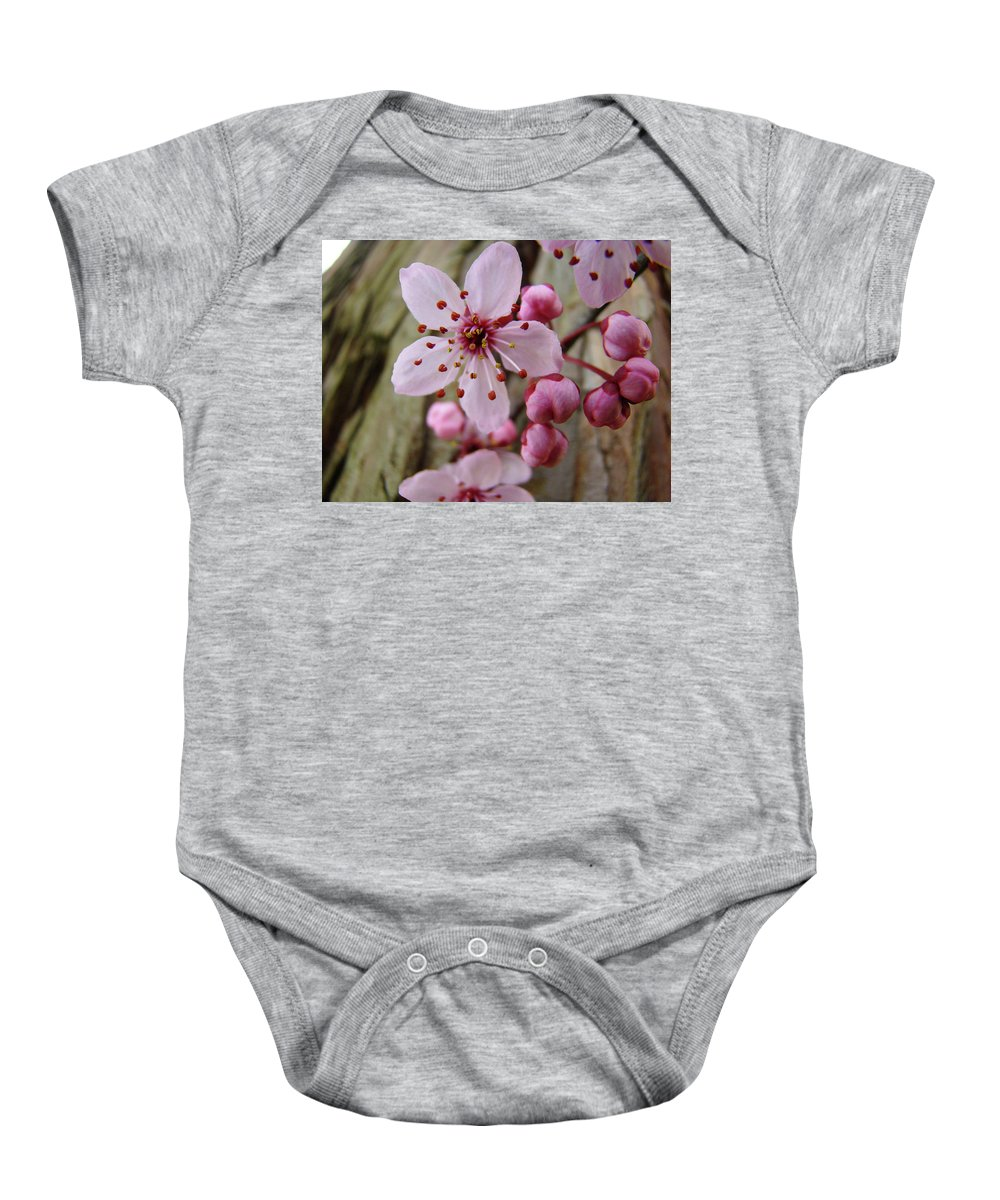 Blossoms Baby Onesie featuring the photograph Trees Art Prints Canvas Pink Blossoms Spring Blue Sky Baslee Troutman by Baslee Troutman