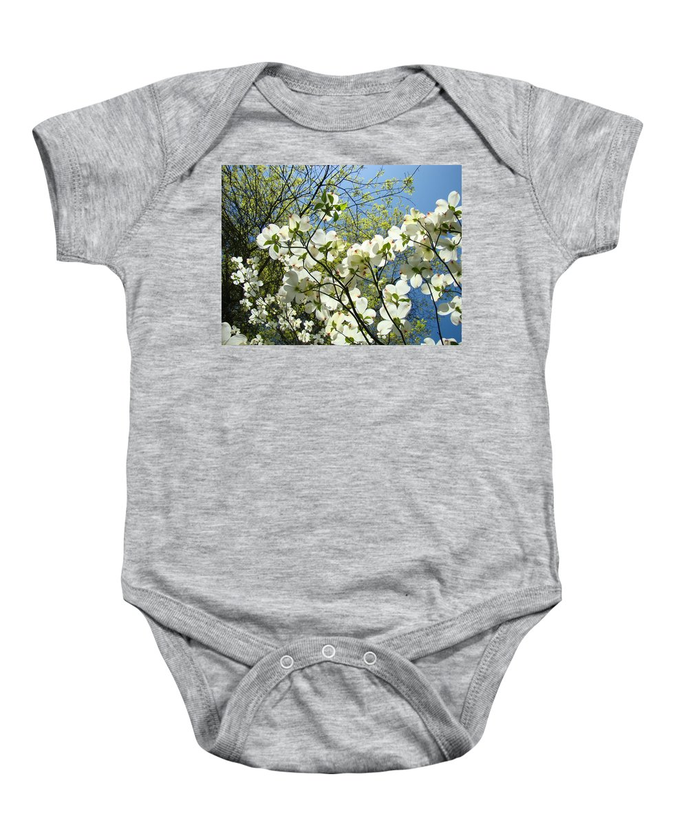 Dogwood Baby Onesie featuring the photograph Trees Sunlit White Dogwood Art Print Botanical Baslee Troutman by Baslee Troutman
