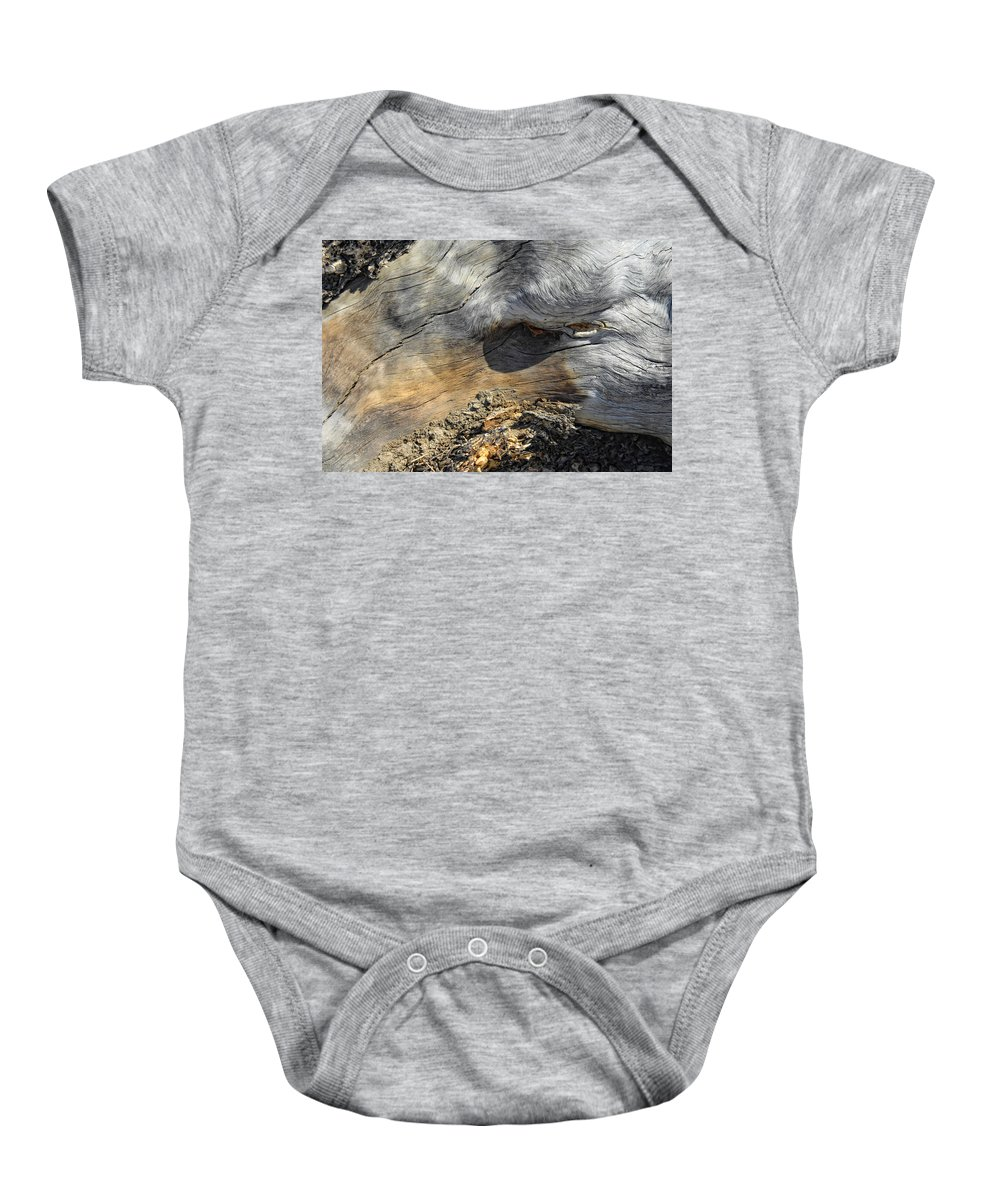 Wood Baby Onesie featuring the photograph Trojan Horse by Donna Blackhall