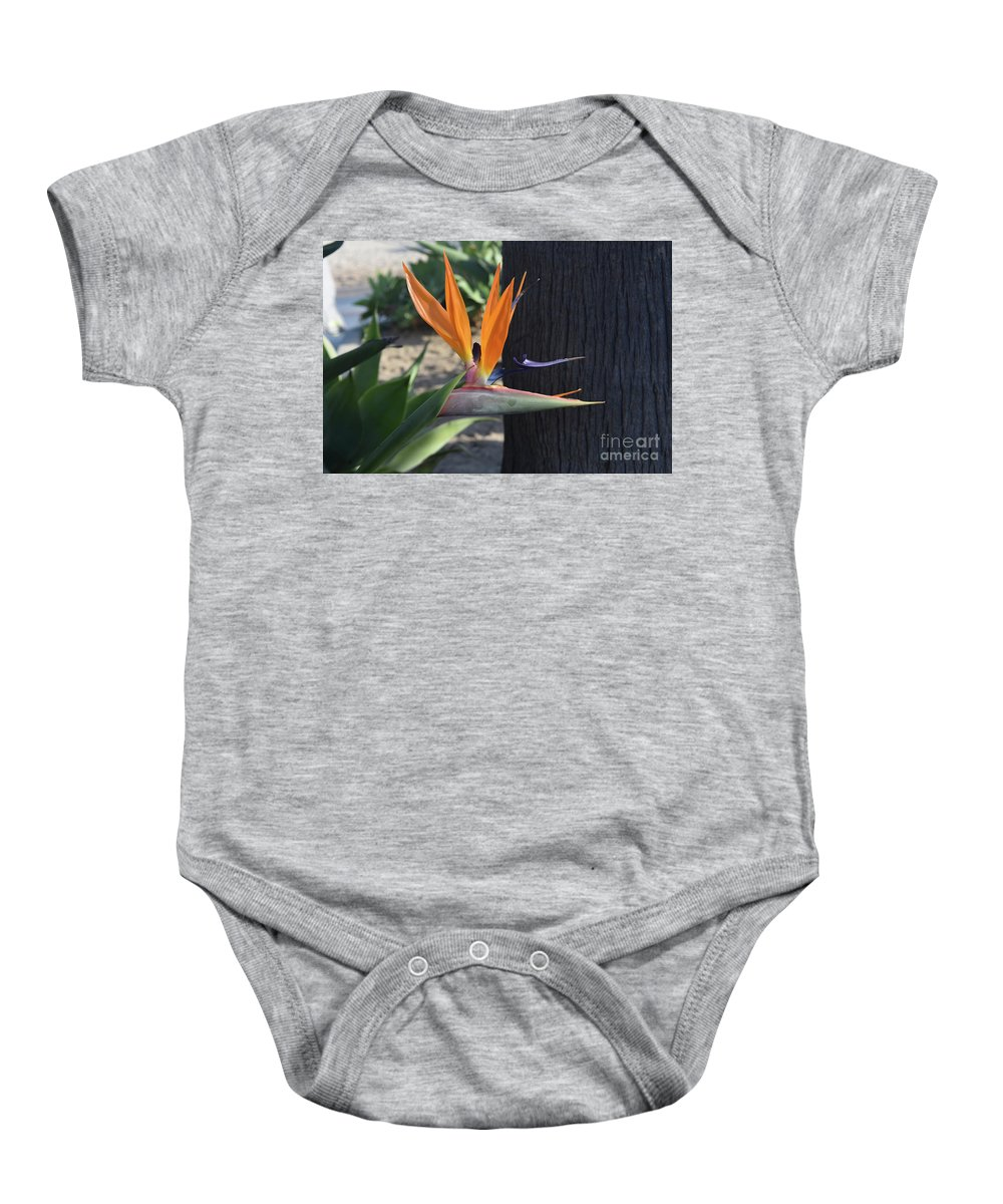 Bird-of-paradise Baby Onesie featuring the photograph Tropical Garden Photo Of A Bird Of Paradise by DejaVu Designs