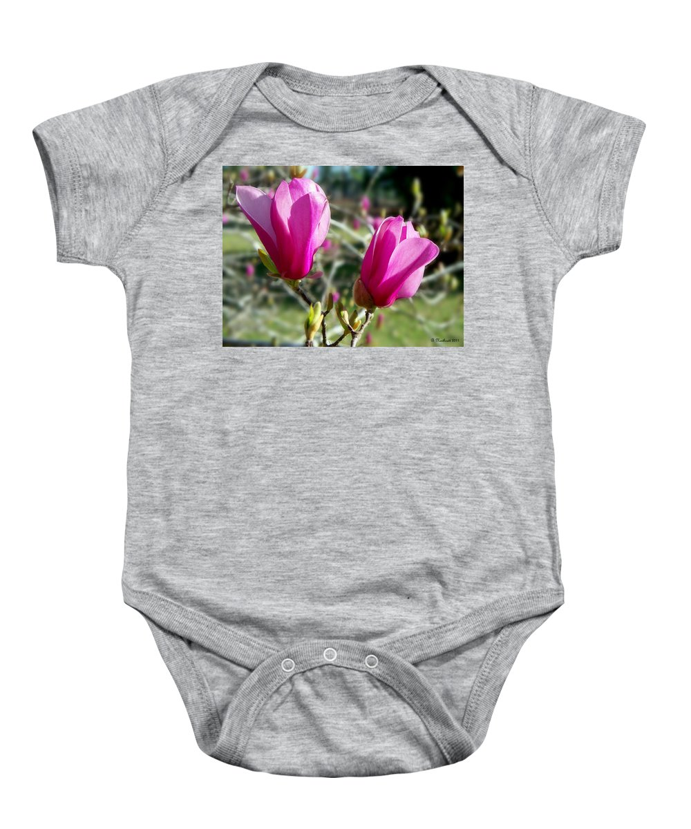 Tulip Baby Onesie featuring the photograph Tulip Tree Blossoms by Betty Northcutt
