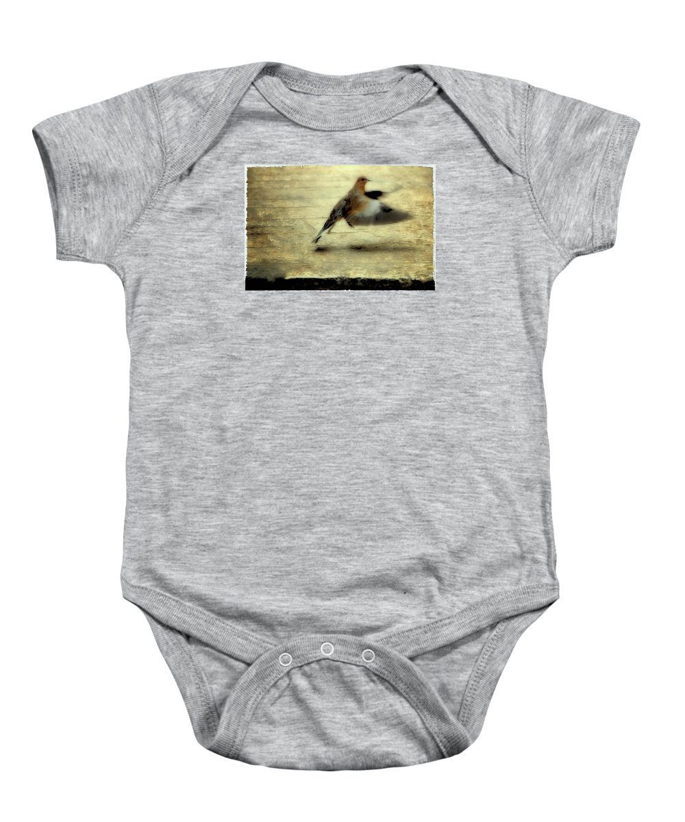 Jewish Baby Onesie featuring the photograph Turtle Dove by Deb Cohen