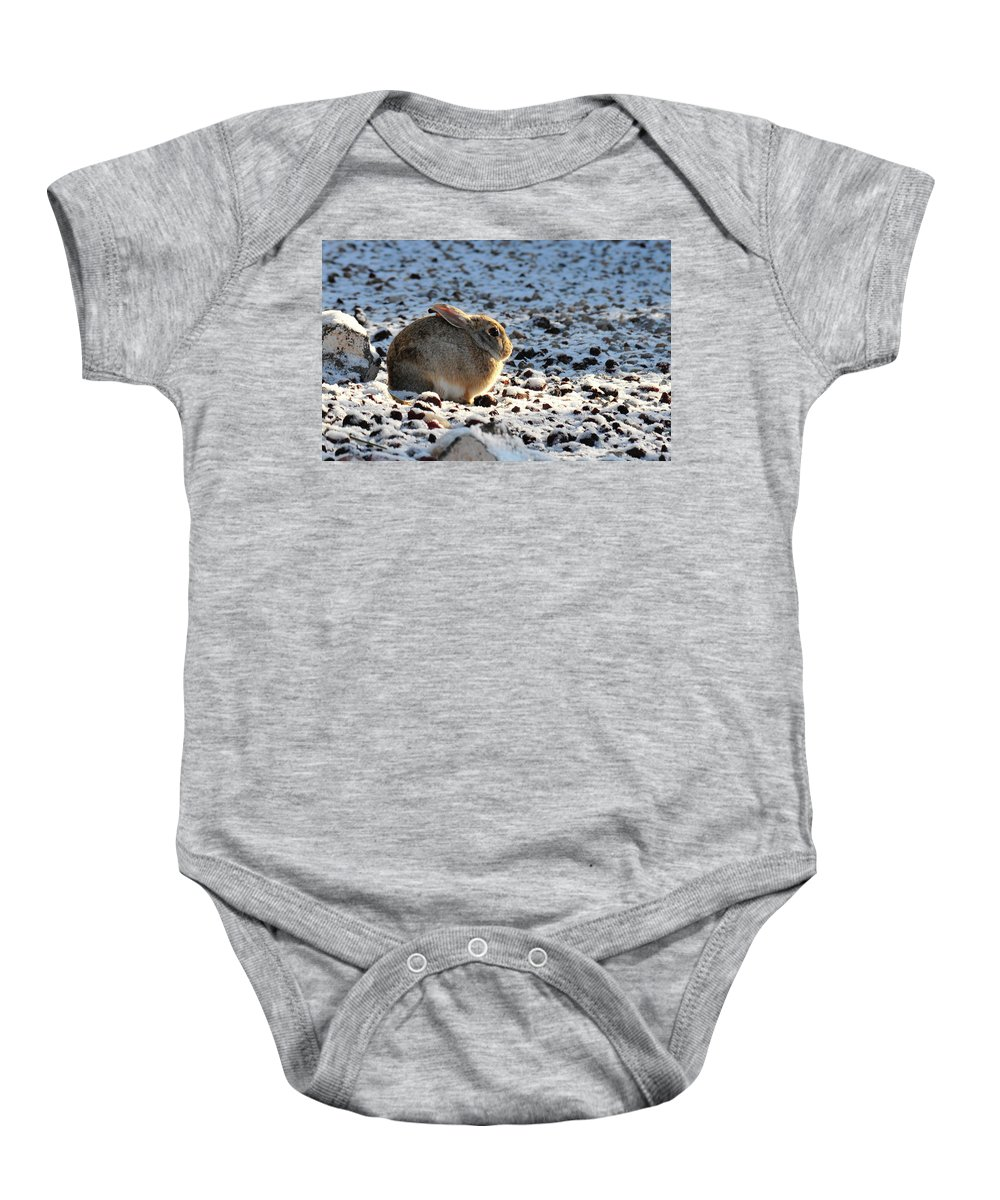 Animal Baby Onesie featuring the photograph Wabbit by David Arment