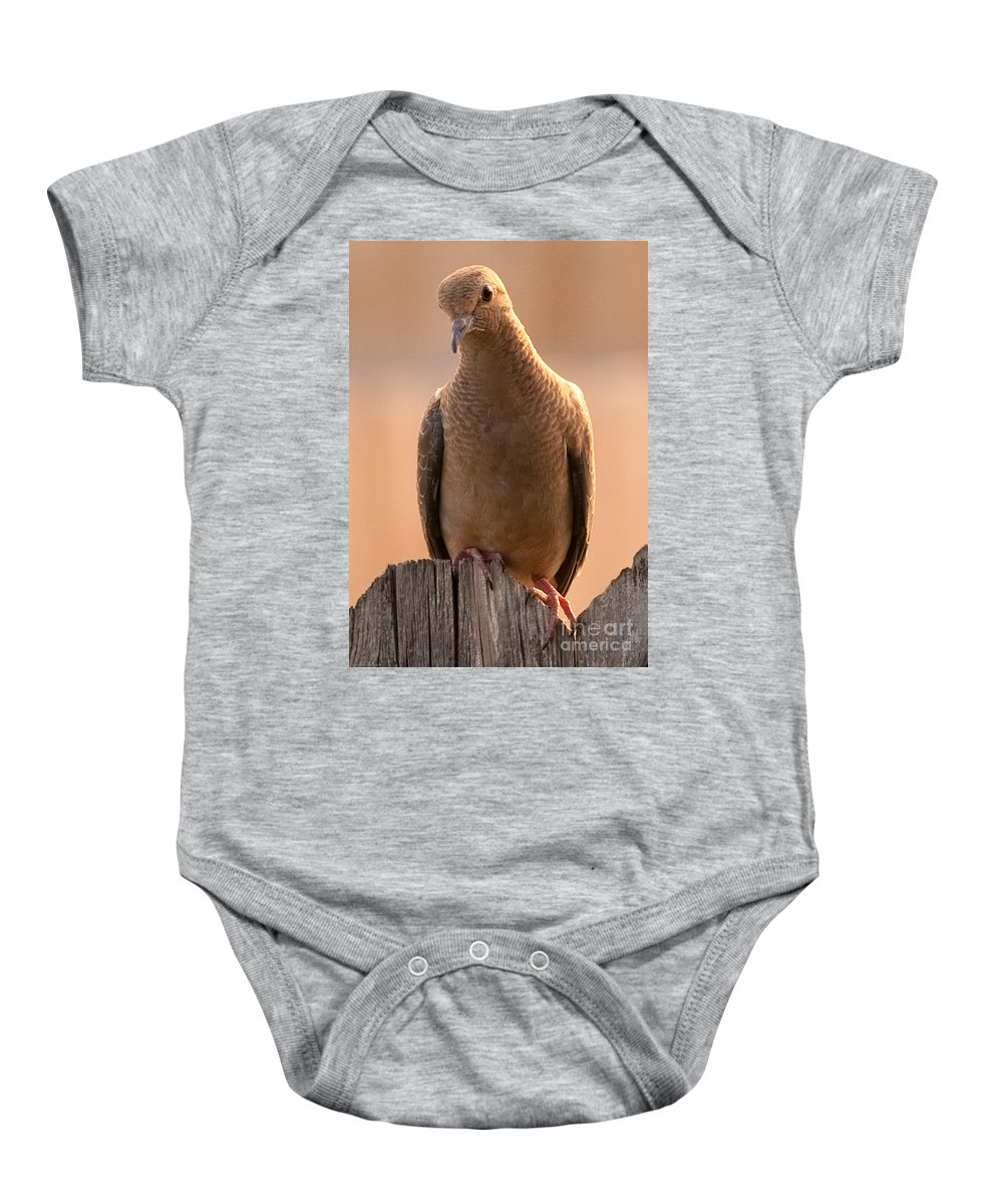 Animals Baby Onesie featuring the photograph Waiting by Charles Dobbs