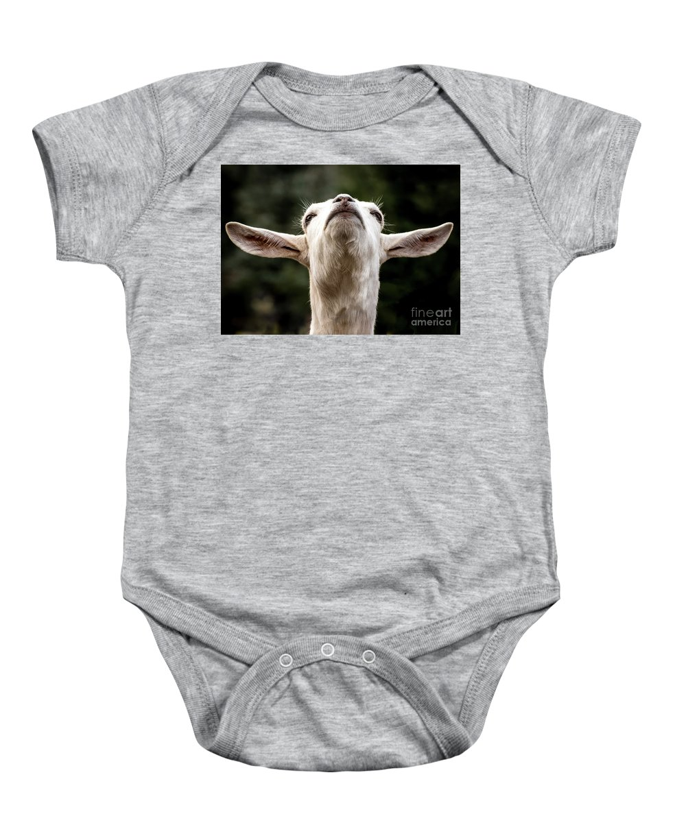 Colorado Springs Zoo Baby Onesie featuring the photograph Waiting For The Rapture by Jennifer Mitchell