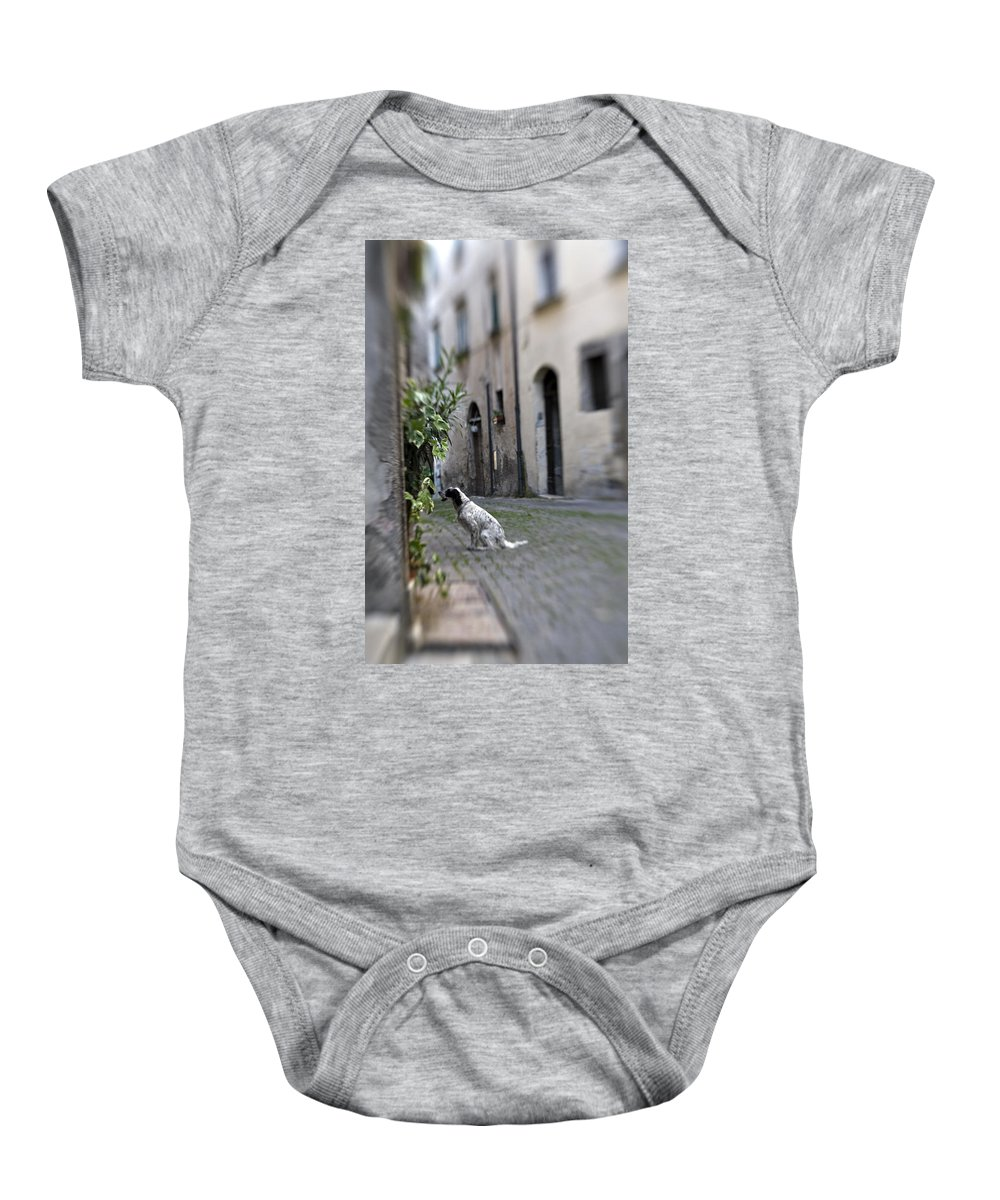 Dog Baby Onesie featuring the photograph Waiting by Marilyn Hunt