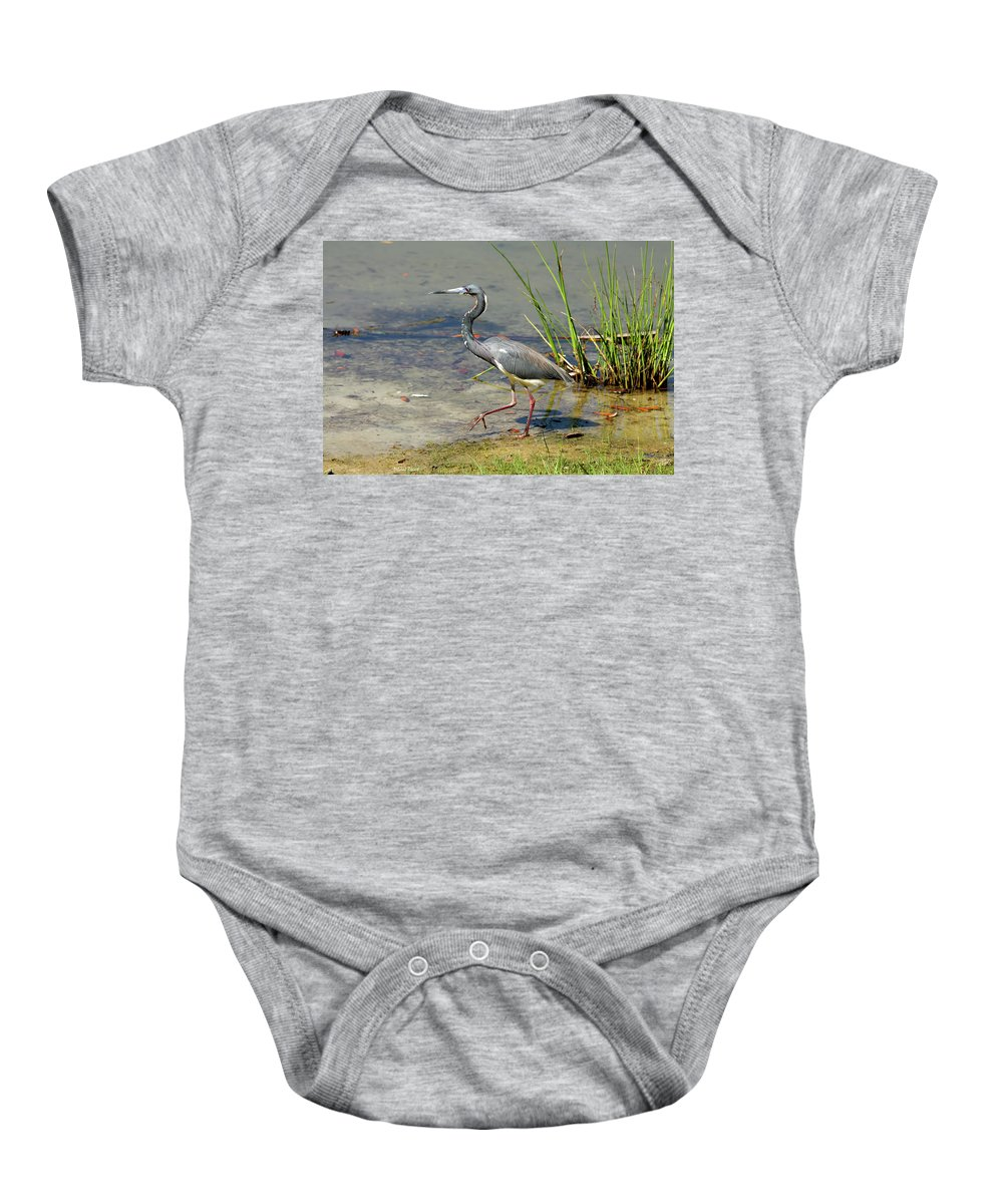 Tri Colored Baby Onesie featuring the photograph Walking On The Edge by Deborah Benoit