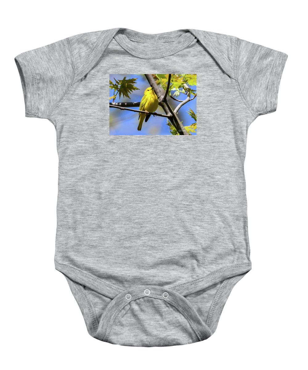 Bird Baby Onesie featuring the photograph Warbler In Yellow by Libby Lord