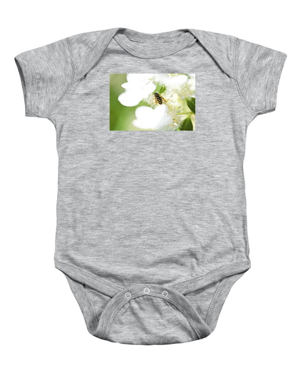 Wasp Baby Onesie featuring the photograph Wasp On Hydrangea by Robert Skuja