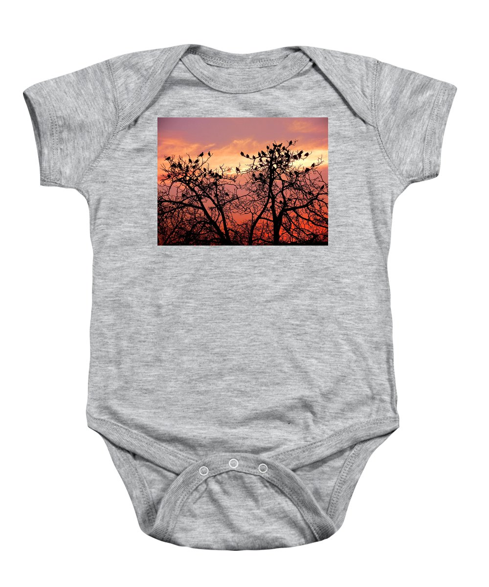 Landscape Baby Onesie featuring the photograph Wente Road Sunset by Karen W Meyer