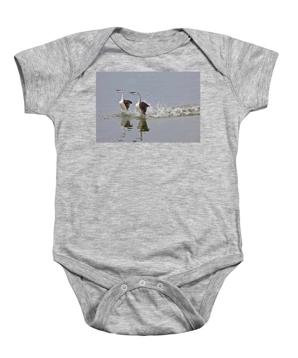 Grebe Baby Onesie featuring the digital art Western Grebe On Lake by Mark Duffy