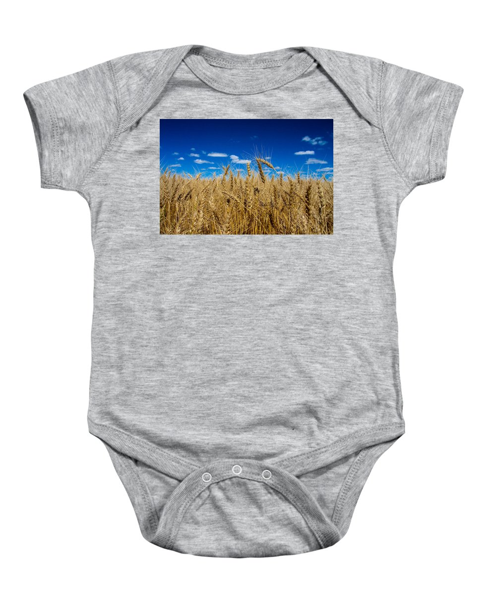 Wheat Baby Onesie featuring the photograph Wheat Field by Bob Mintie