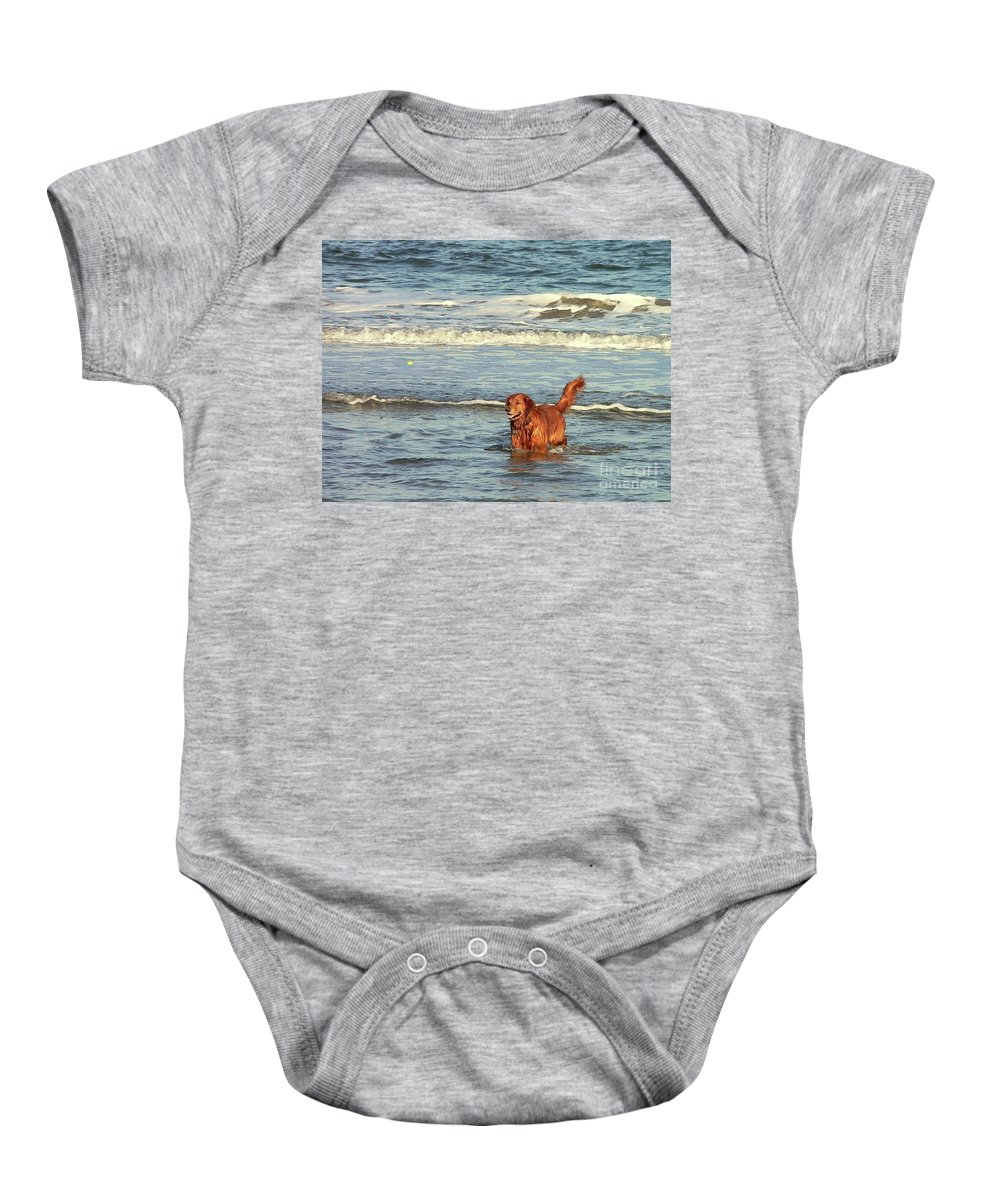 Pet Baby Onesie featuring the photograph Where's The Ball by Al Powell Photography USA