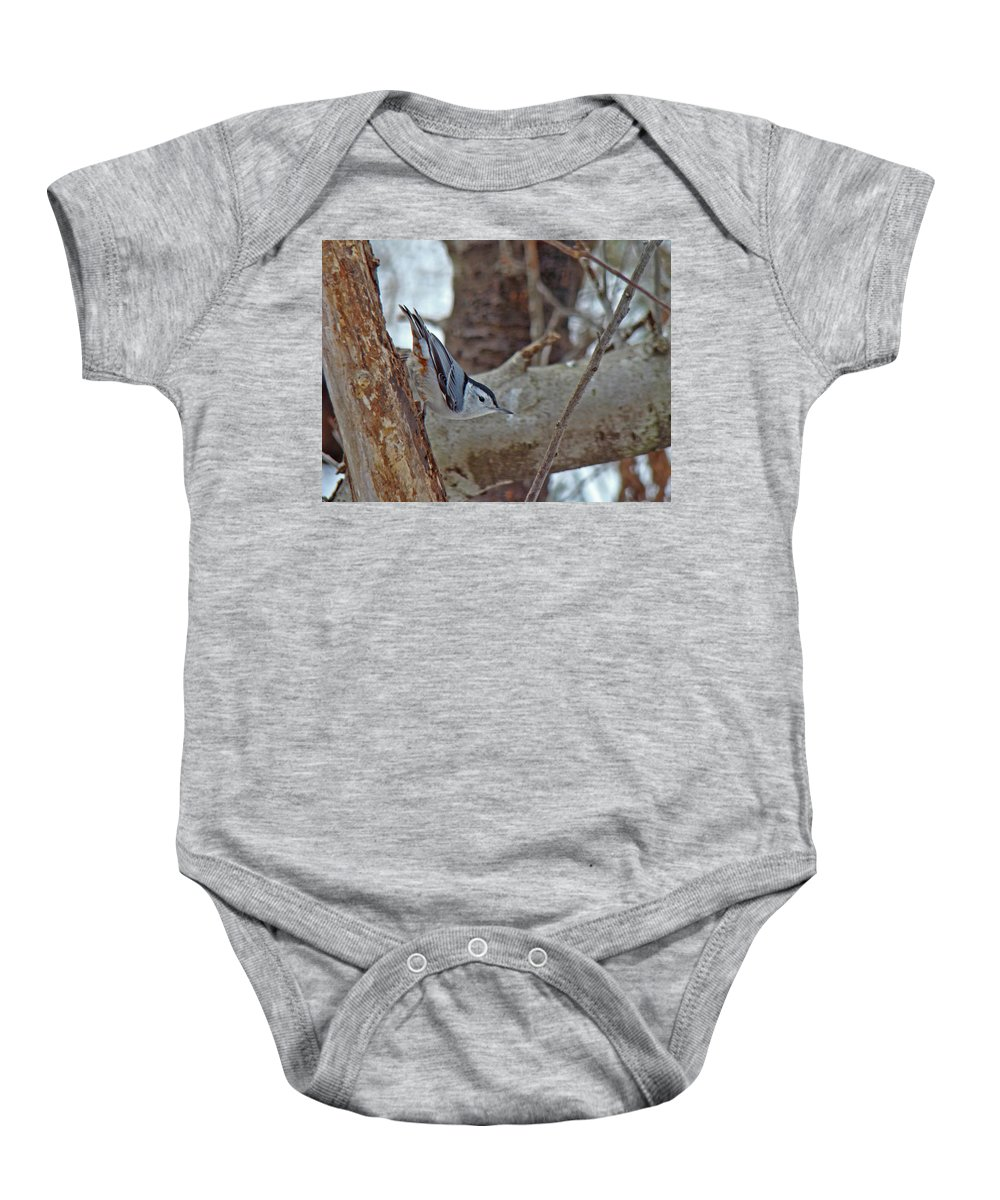 Nuthatch Baby Onesie featuring the photograph White Breasted Nuthatch - Sitta Carolinensis by Mother Nature