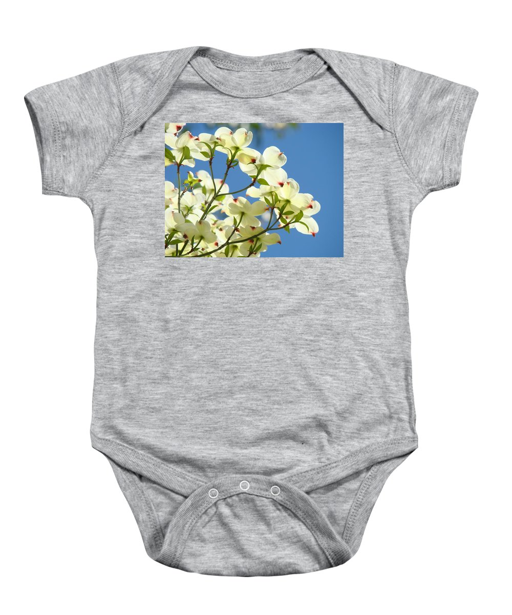 Dogwood Baby Onesie featuring the photograph White Dogwood Flowers 1 Blue Sky Landscape Artwork Dogwood Tree Art Prints Canvas Framed by Baslee Troutman