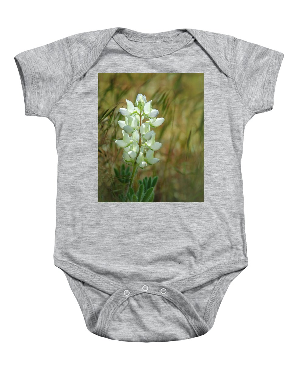 White Lupin Baby Onesie featuring the photograph White Lupin Lupinus Albus by Rick Mosher