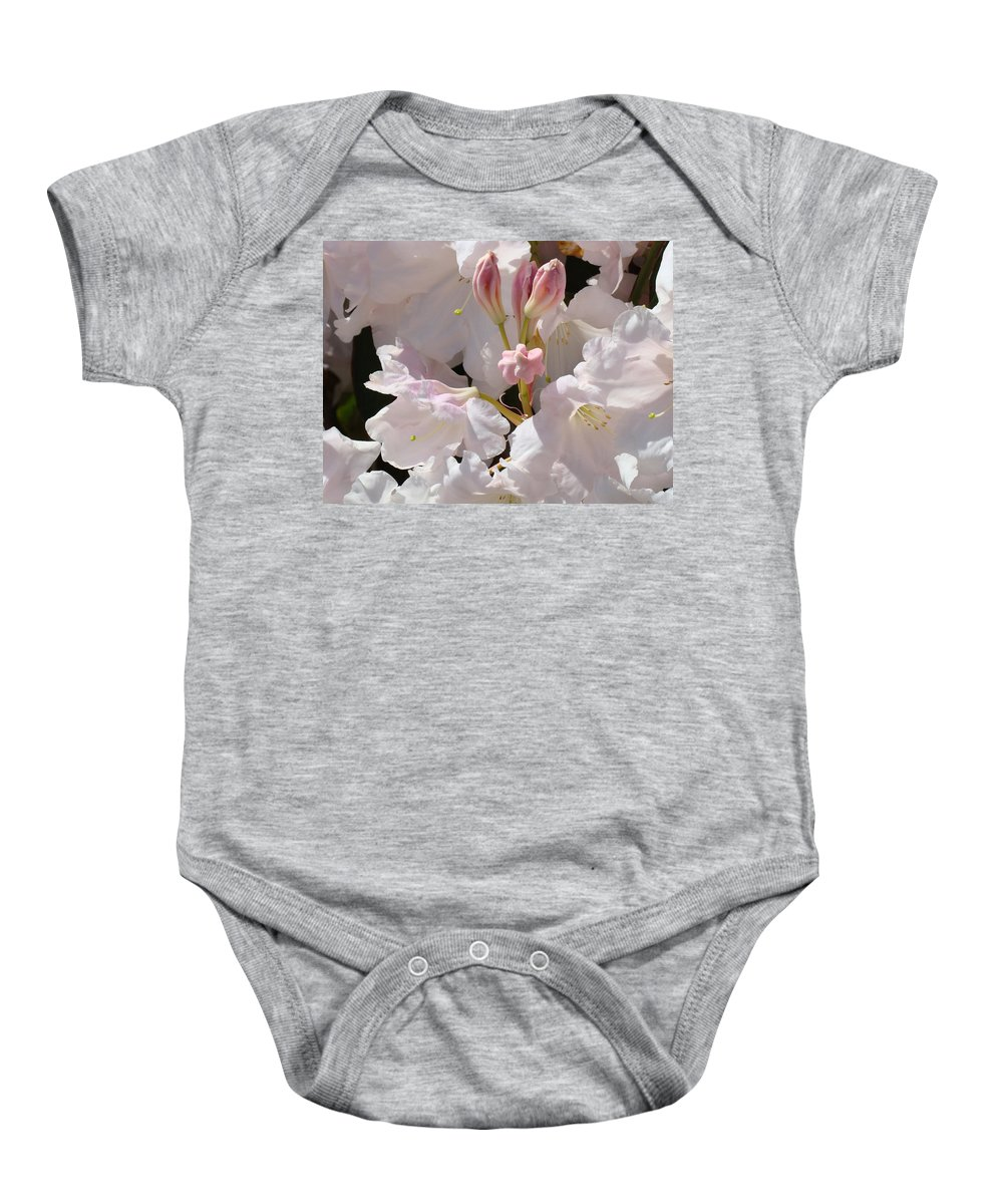 Rhodie Baby Onesie featuring the photograph White Rhodies Pink Rhododendrons Flowers Art Prints Canvas Botanical Baslee Troutman by Baslee Troutman