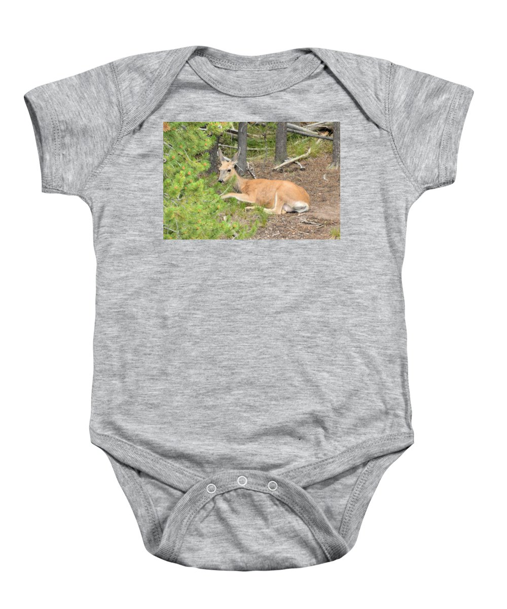 yellowstone National Park Baby Onesie featuring the photograph White Tail by Wendy Fox