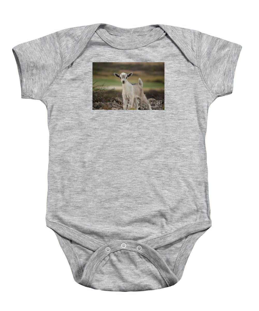 Baby Goat Baby Onesie featuring the photograph Wild Baby Goat In Aruba by DejaVu Designs