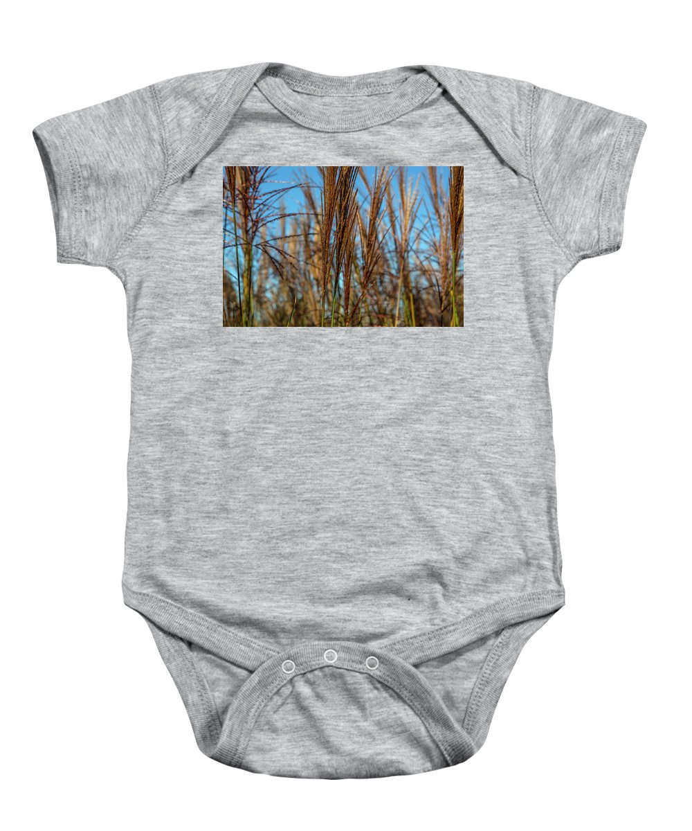 Grass Baby Onesie featuring the photograph Wild Grass by David Hare