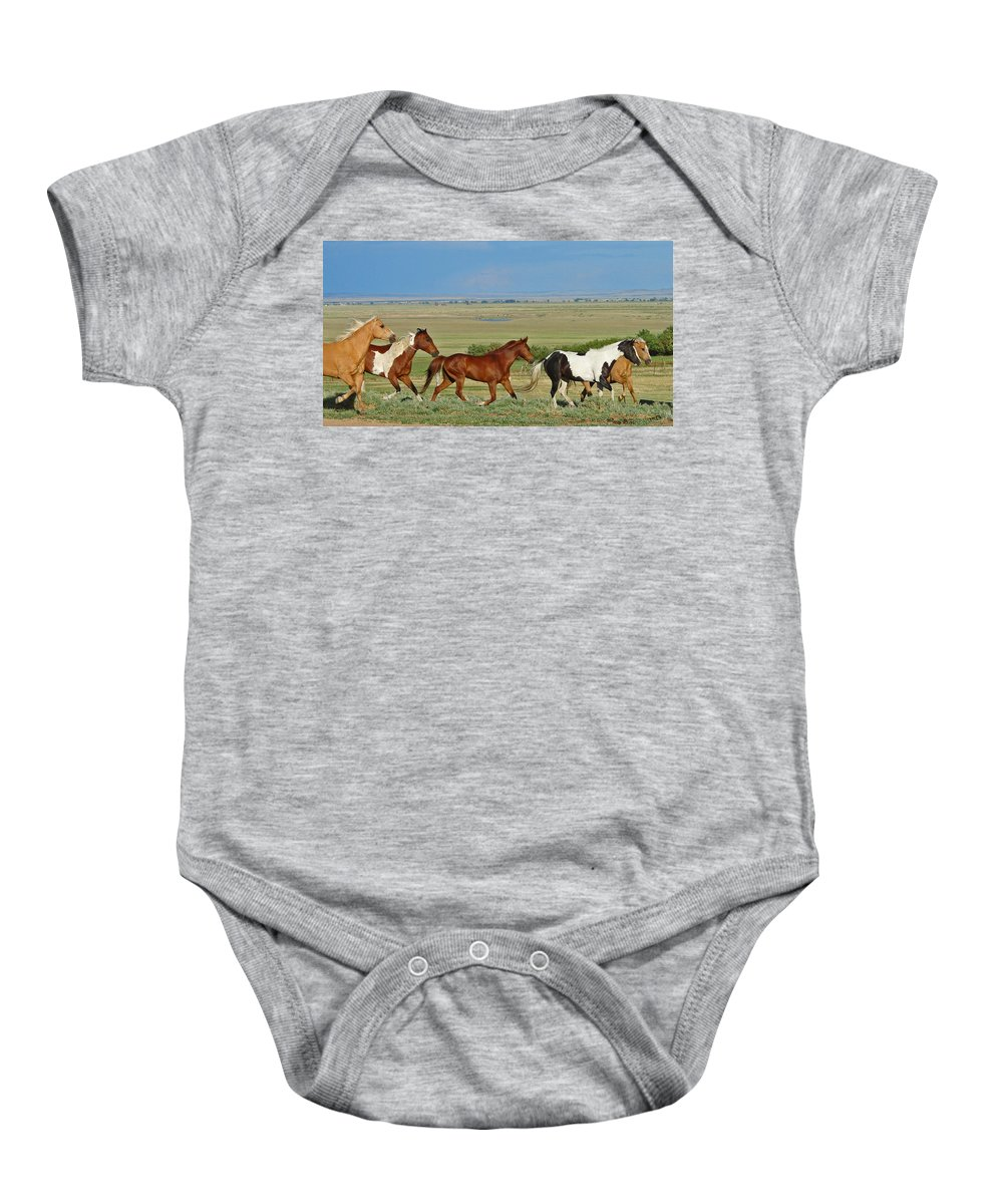 Herd Baby Onesie featuring the photograph Wild Horses Wyoming by Heather Coen