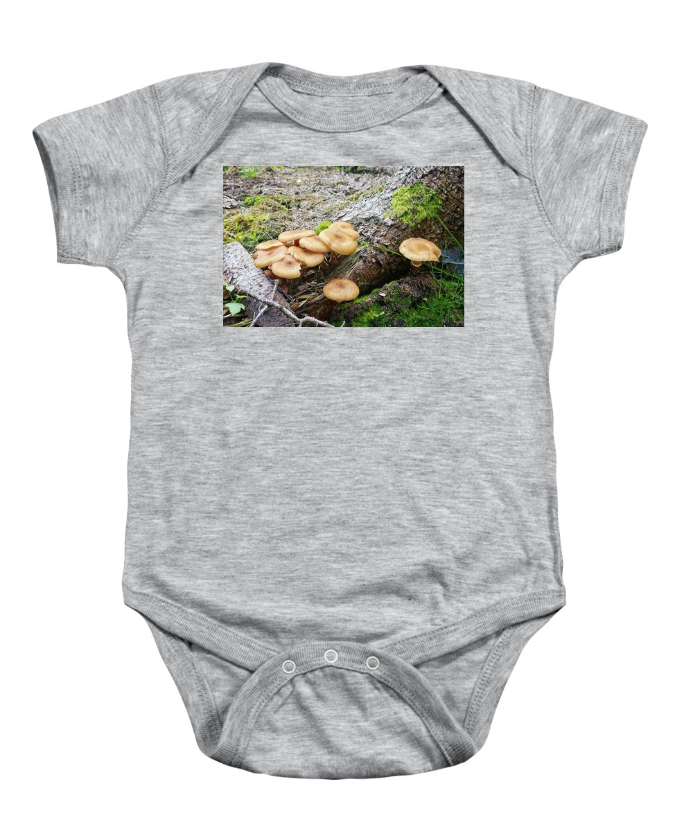Wild Baby Onesie featuring the photograph Wild Mushrooms 2 by Bernard Barcos