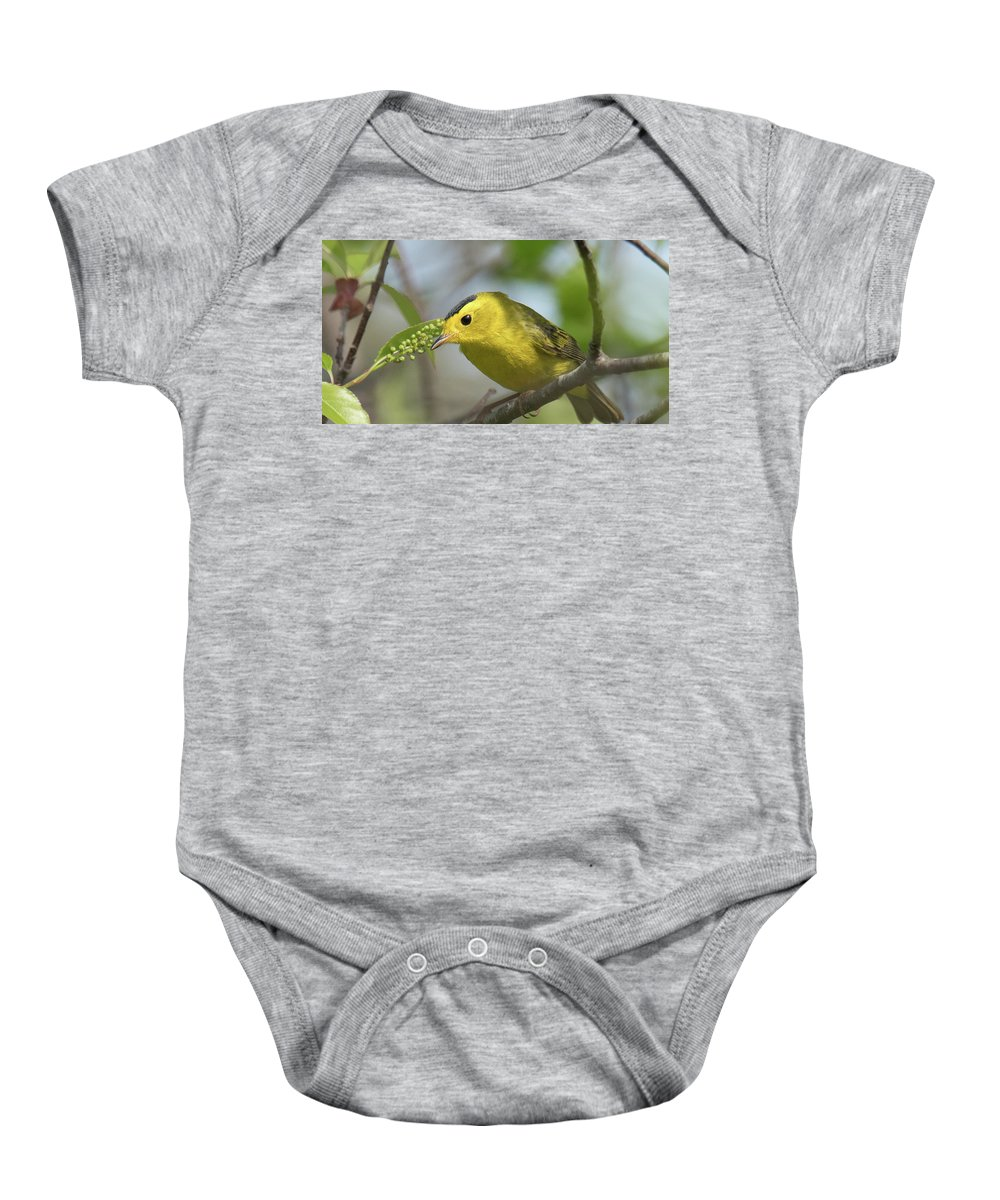 Warbler Baby Onesie featuring the photograph Wilson's by Judd Nathan