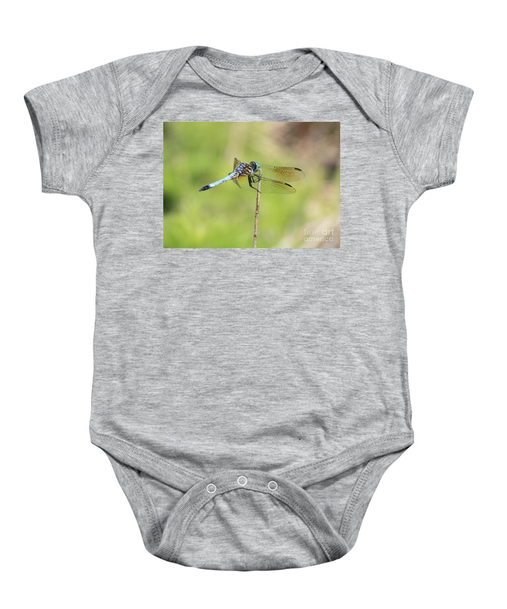 Dragonfly Baby Onesie featuring the photograph Windswept Dragonfly by Carol Groenen