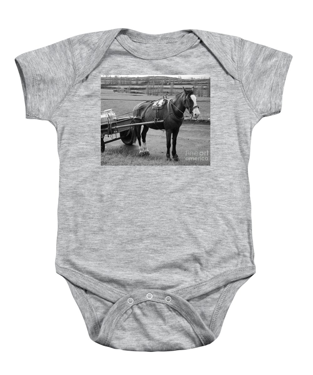 Cart Baby Onesie featuring the photograph Work Horse And Cart by Gaspar Avila