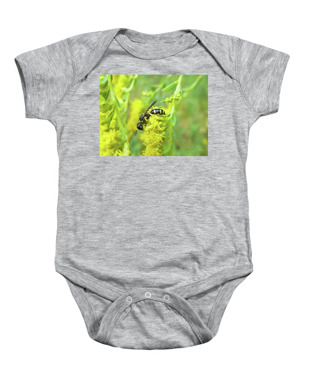 Wasp Baby Onesie featuring the photograph Yellow Jacket by Mother Nature