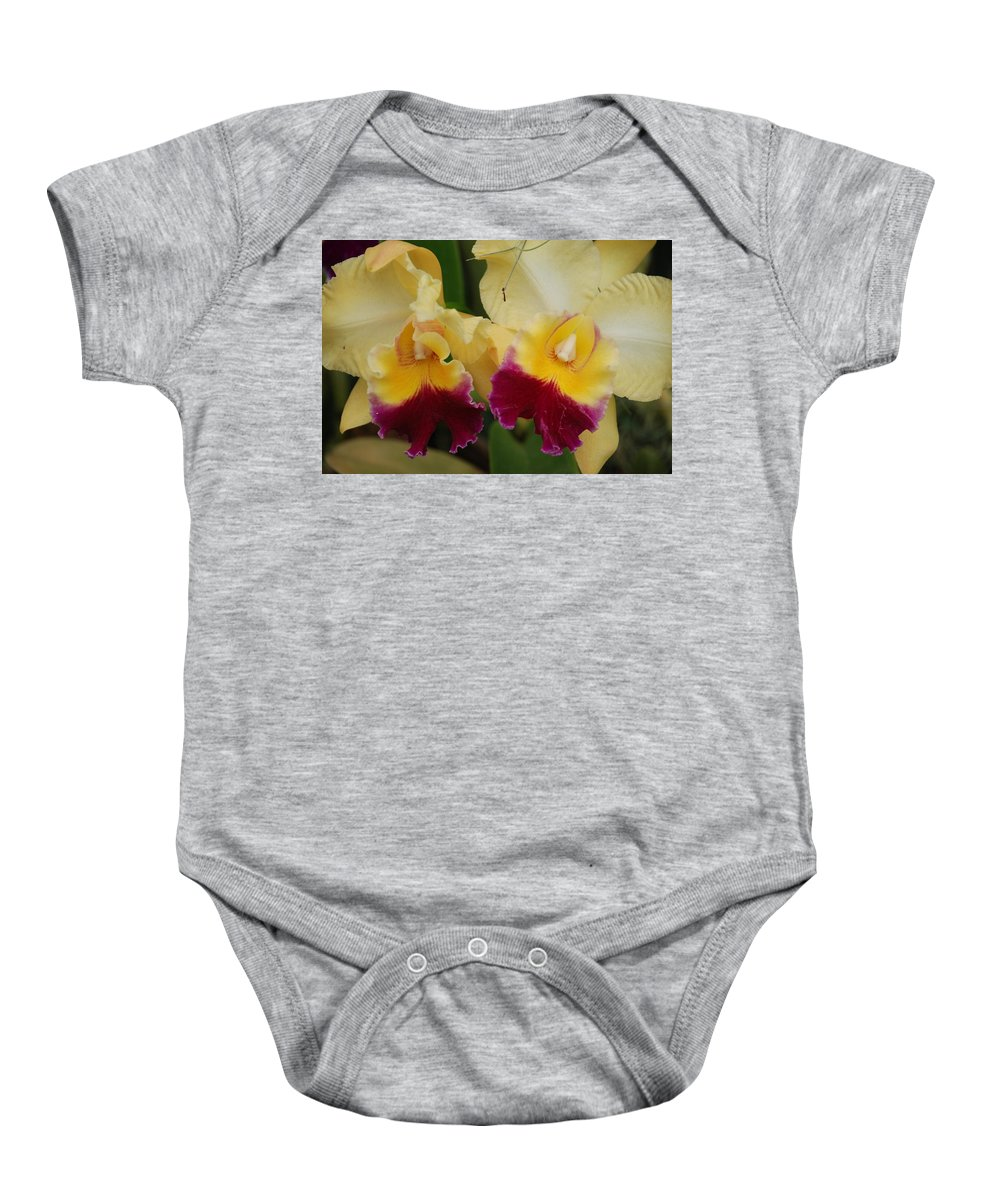 Macro Baby Onesie featuring the photograph Yellow Purple Orchids by Rob Hans