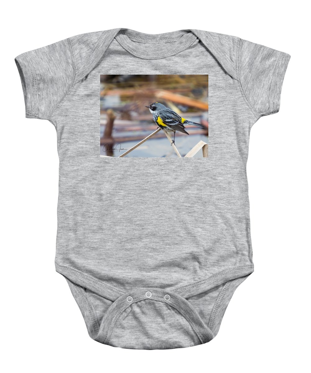 Bird Baby Onesie featuring the photograph Yellow-rumped Warbler by Charlaine Jean