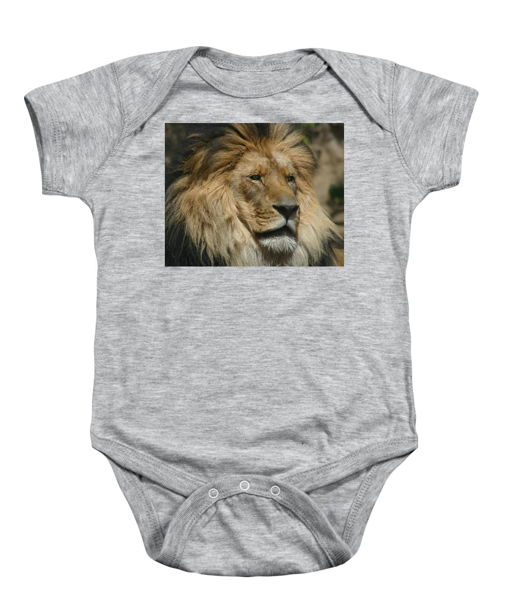Lion Baby Onesie featuring the photograph Your Majesty by Anthony Jones