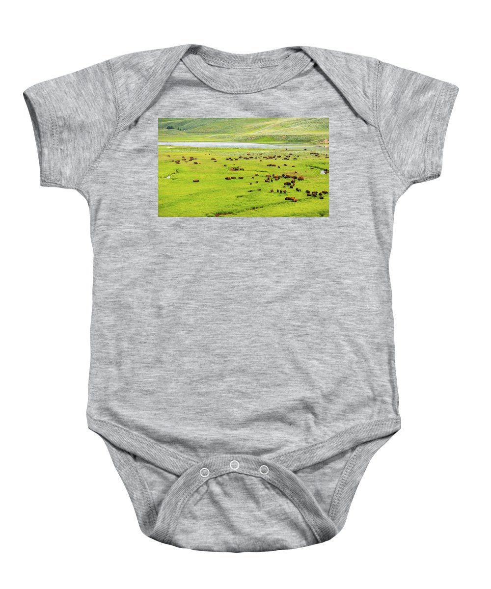 Yellowstone Baby Onesie featuring the photograph American Savannah by Aaron Geraud