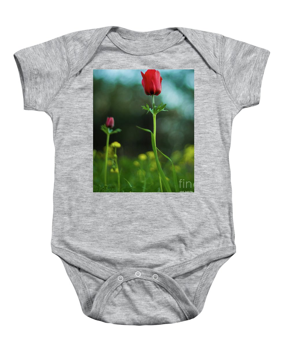 Flowers Baby Onesie featuring the photograph Aspecial Flower by Ayob Kabha