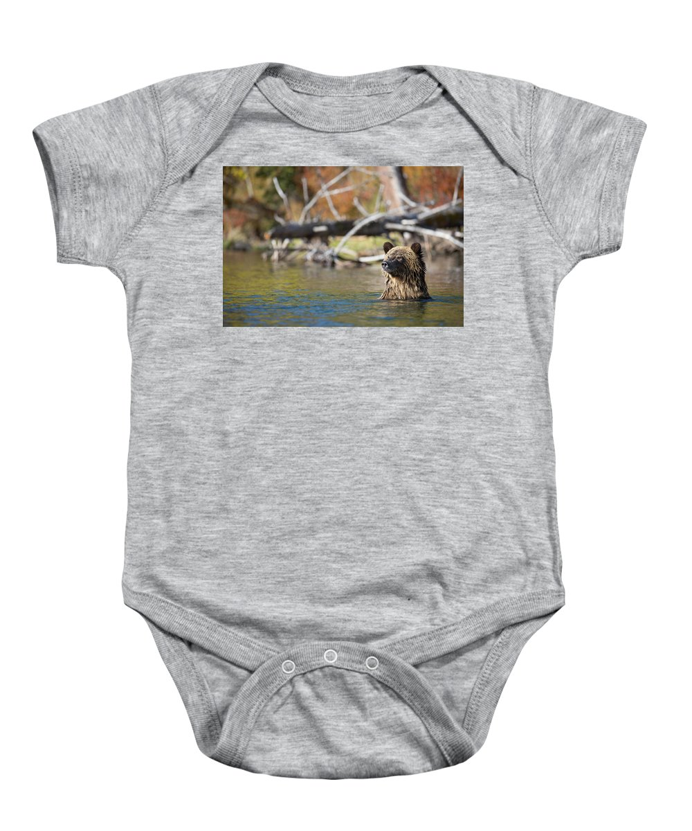 Bear Baby Onesie featuring the photograph Bathing Blonde Grizzly by Dan Carr