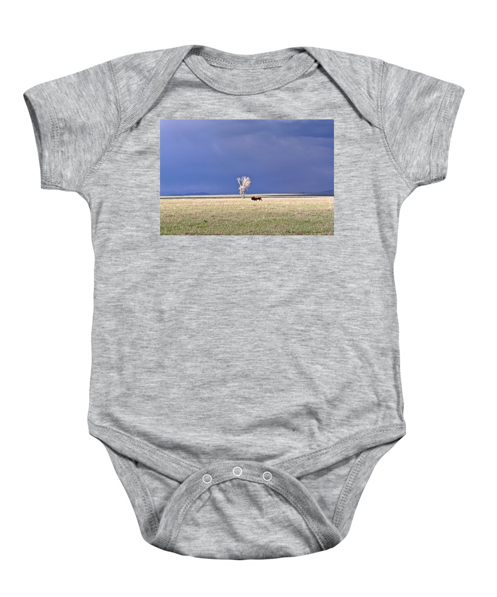 Lone Baby Onesie featuring the photograph Lone Buffalo After Storm by Douglas Barnett
