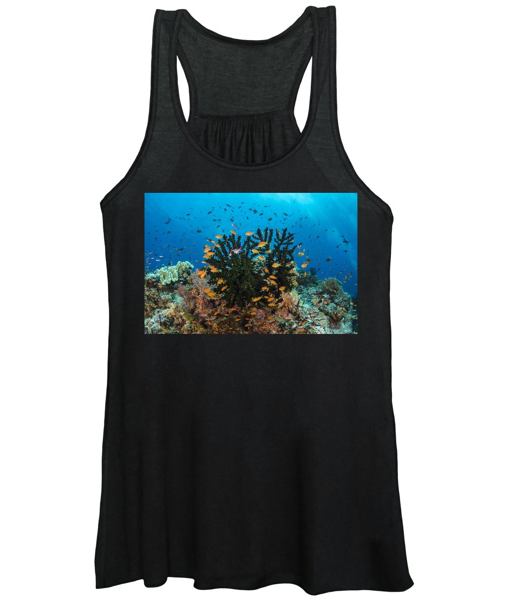 Pete Oxford Women's Tank Top featuring the photograph Black Sun Coral And Sea Goldies Fiji by Pete Oxford