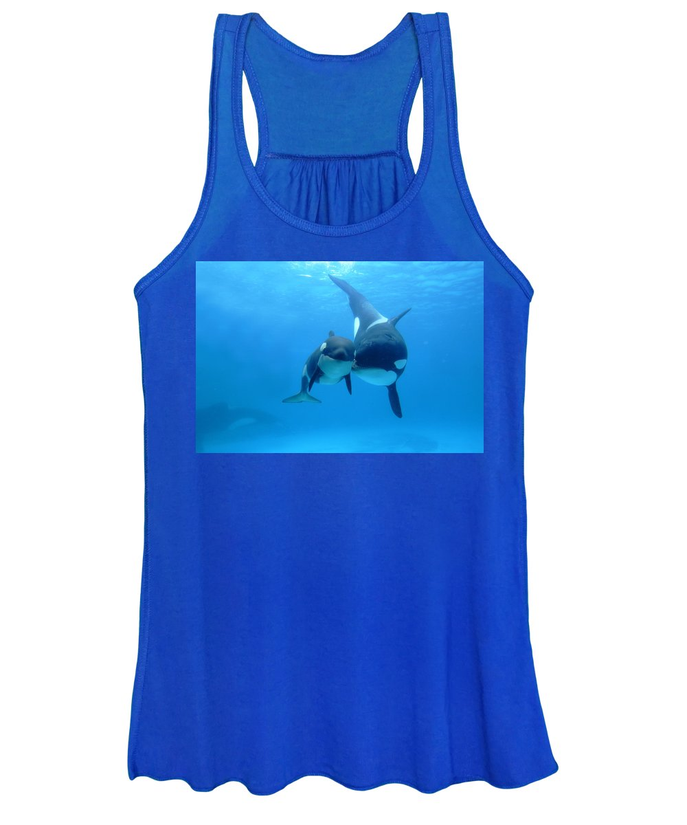 Mp Women's Tank Top featuring the photograph Orca Orcinus Orca Mother And Newborn by Hiroya Minakuchi
