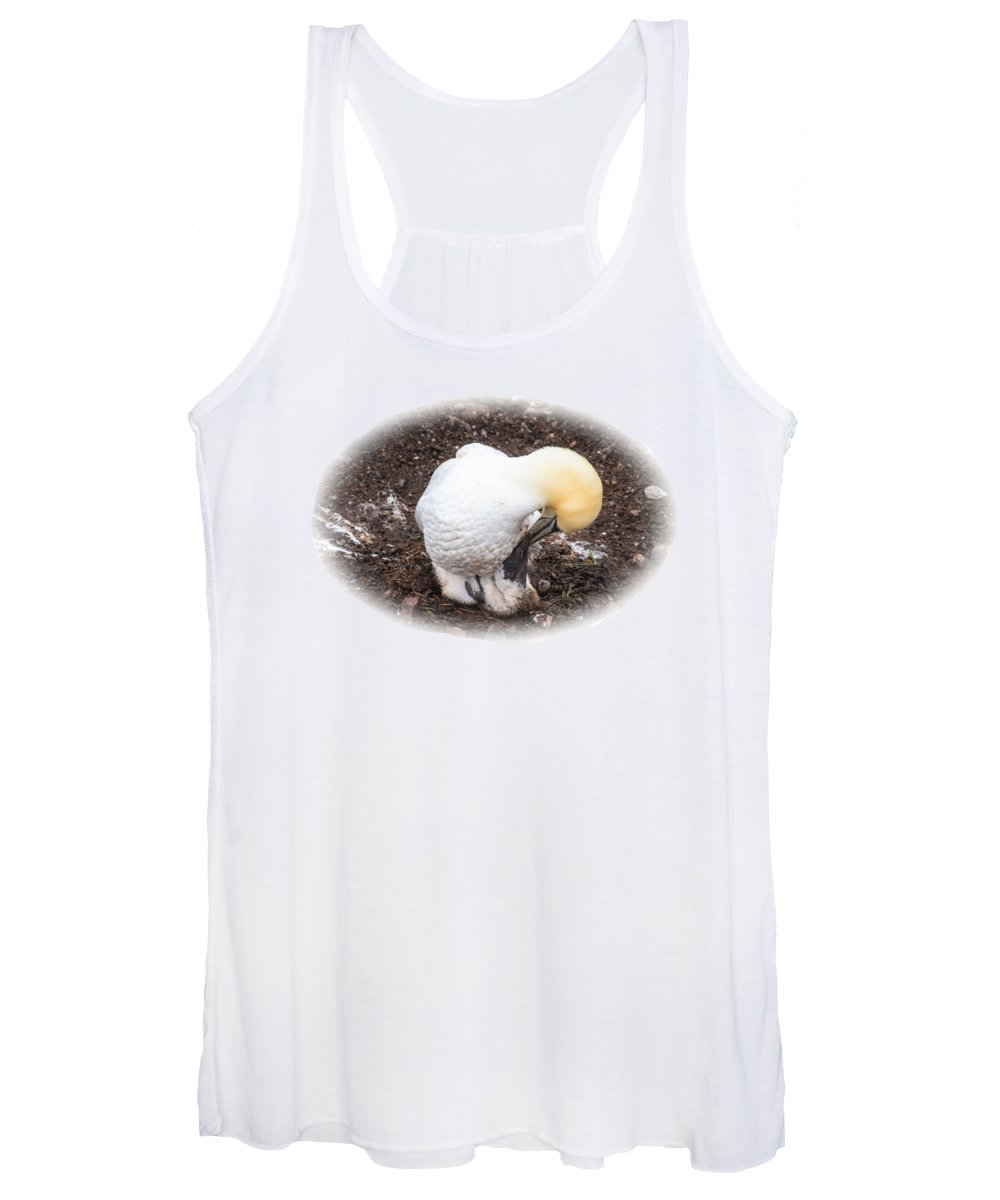 Northern Gannet Women's Tank Top featuring the photograph I'll Love You Forever by Marlin and Laura Hum
