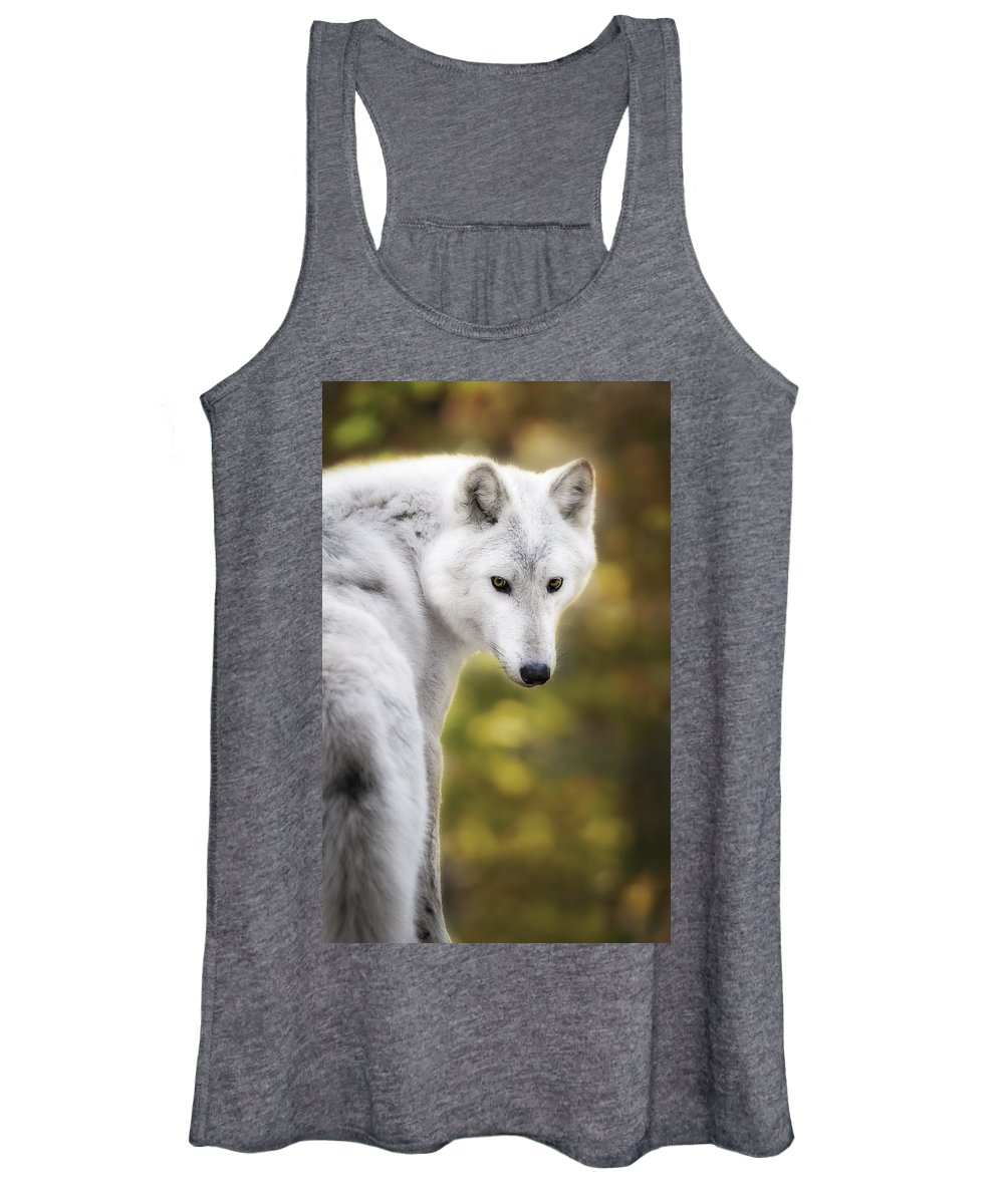 British Columbian Wolfs Women's Tank Top featuring the photograph Hey You by Eduard Moldoveanu