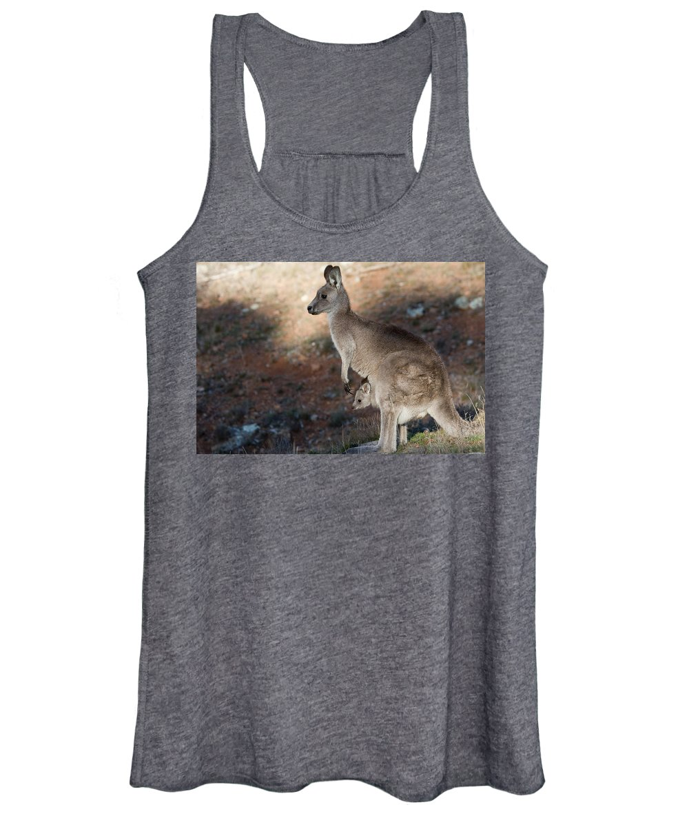 Australia Women's Tank Top featuring the photograph Kangaroo And Joey by Steven Ralser