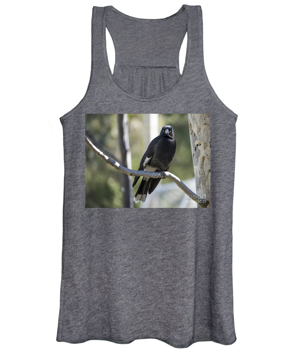 Canberra Women's Tank Top featuring the photograph Magpie by Steven Ralser