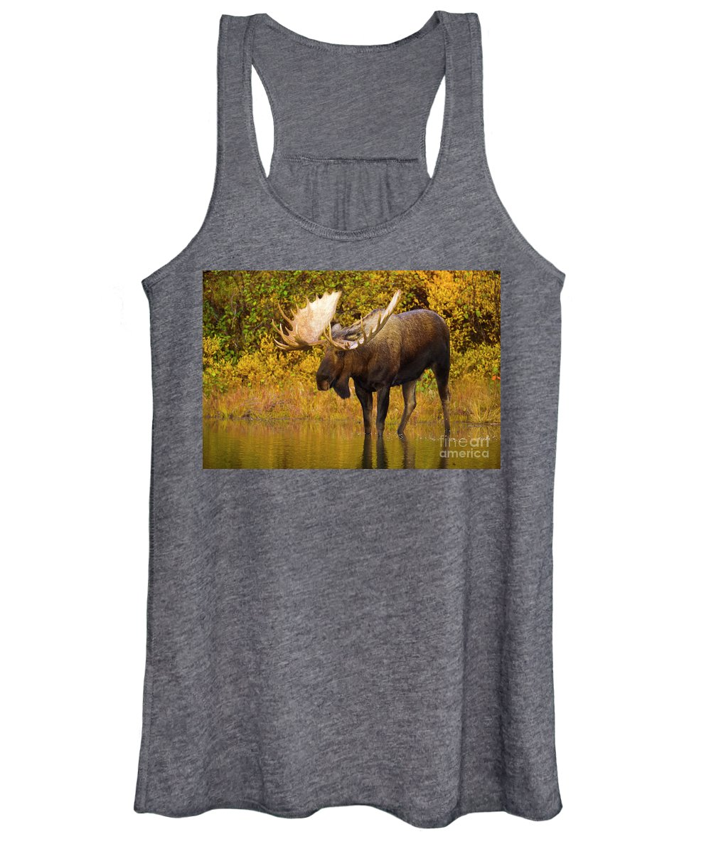 00345399 Women's Tank Top featuring the photograph Moose In Glacial Kettle Pond by Yva Momatiuk John Eastcott