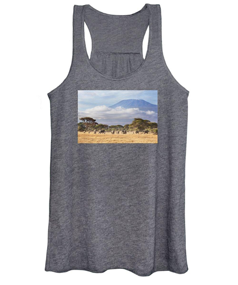 Nis Women's Tank Top featuring the photograph Mount Kilimanjaro Amboseli by Richard Garvey-Williams
