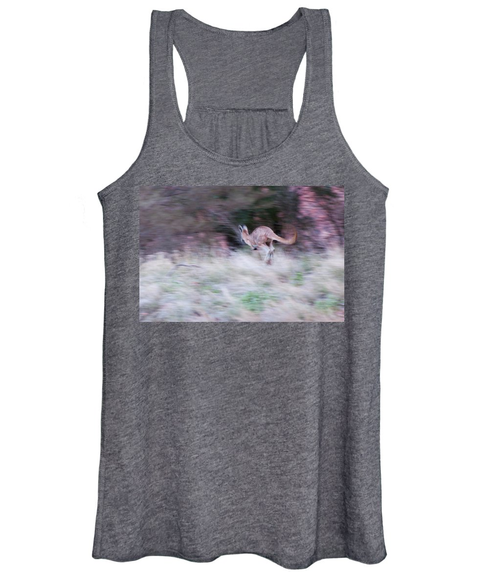 Australia Women's Tank Top featuring the photograph A Kangaroo Escaping In The Bush by Davide Devecchi